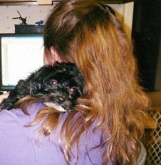Puppy Dee0001