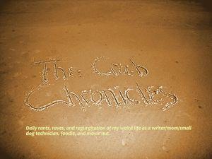 Crab Chronicles sand
