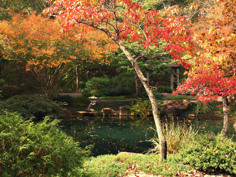 Autumn Linda