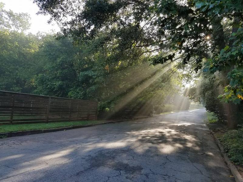 Creek sunlight